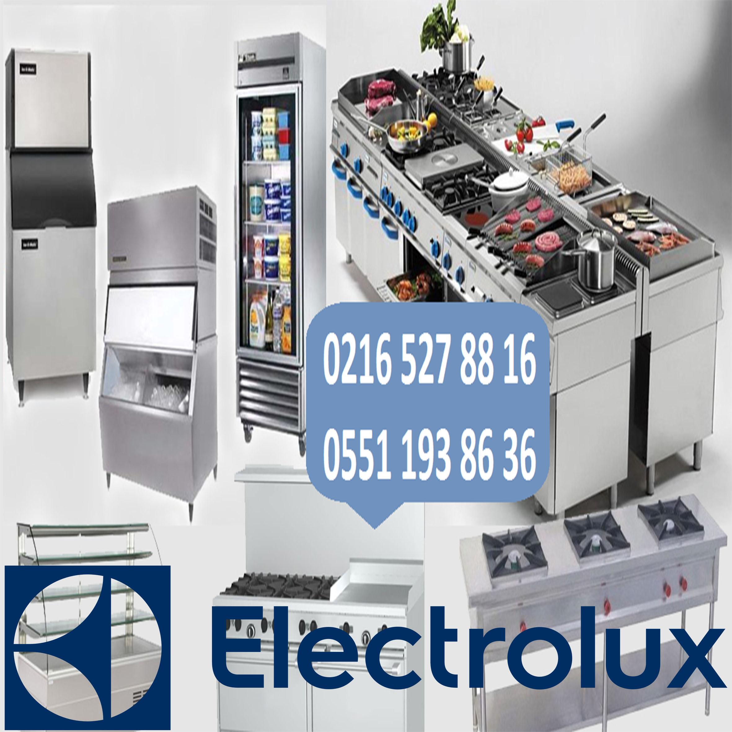 elektrolux servisi